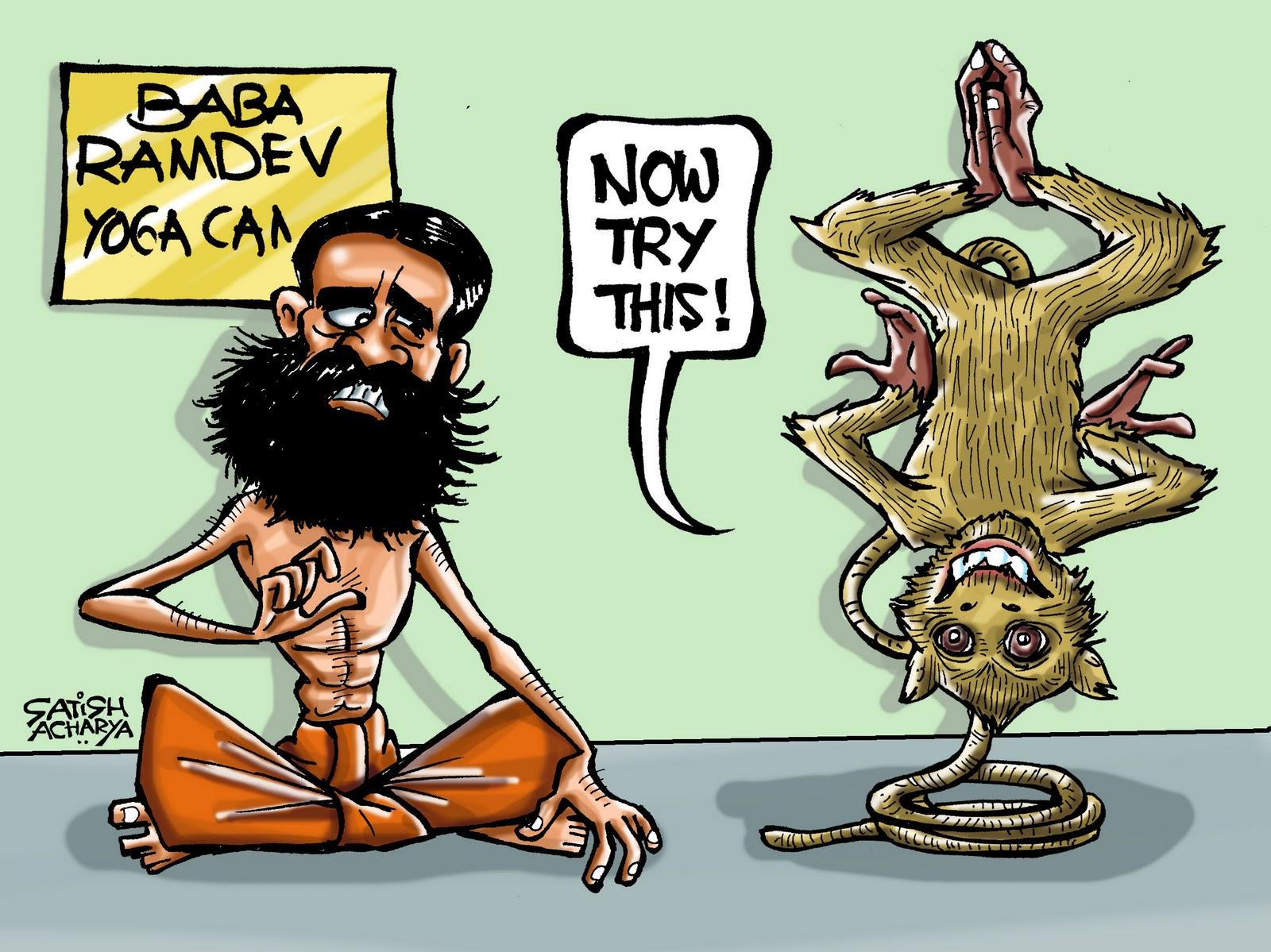 Monkey at Ramdev's camp